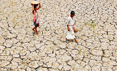 gujarat_drought